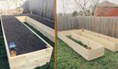 Delimitare gradina prin scandura de lemn