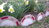 Farfurii folosite ca si bodura rond flori