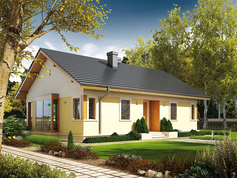 Proiect casa parter cu 2 dormitoare