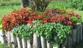 Rond de flori marginit de busteni