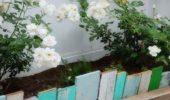 Scandura reciclata gard pentru gradina