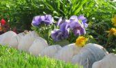 Scoici mari delimitare intre flori si gazon